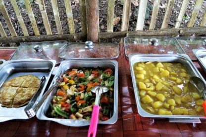 Chiangmai Elephant Home - 3 Days 2 Nights Elephant Experience - Buffet Lunch