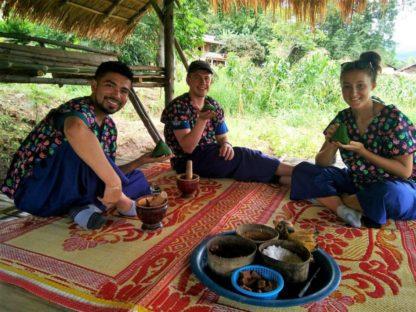 Chiangmai Elephant Home - 3 Days 2 Nights Elephant Experience - Make a Vitamin Balls for your Elephants