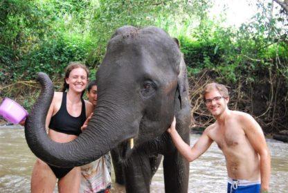 Chiangmai Elephant Home - One Day Hiking and Elephant Experience - Bathing your Elephant