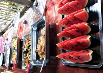 Chiangmai Elephant Home - One Day Hiking and Elephant Experience - Buffet Lunch