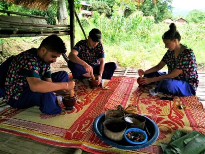 Chiangmai Elephant Home - One Day Hiking and Elephant Experience - Make Vitamin Balls for your elephants