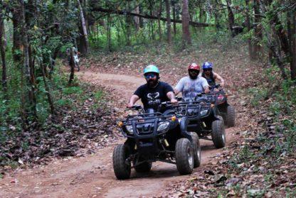 Chiangmai Elephant Home - One day Elephant Experience and ATV - ATV program