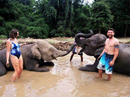 Chiangmai Elephant Home - One day Elephant Experience and Farmer - Elephant Mud Spa