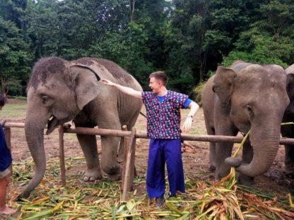 Chiangmai Elephant Home - One day Elephant Experience and Zipline - Feeding your Elephant