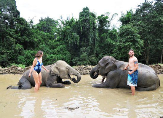 Chiangmai Elephant Home - 2 Days 1 Night Elephant Experience - Elephant Mud Spa