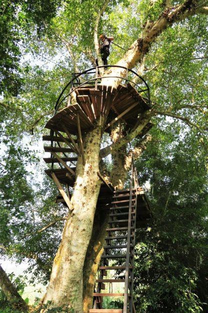 Chiangmai Elephant Home - Zipline Adventure - Spiral Staircases