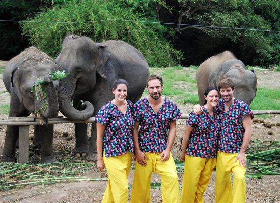 Chiang Mai Elephant Home - 12 Aug 2018 - Full day - Group photo