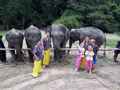Chiang Mai Elephant Home - 15 Aug 2018 - Full day - Group photos