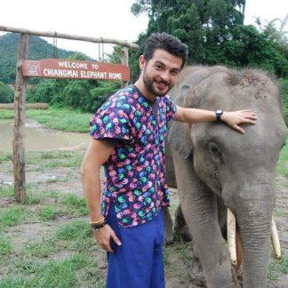 Chiangmai Elephant Home - One day Elephant Experience