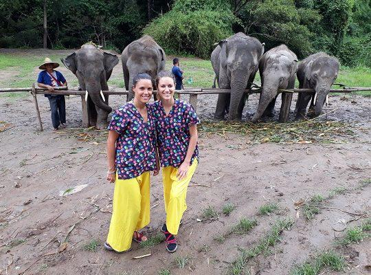 Chiang Mai Elephant Home - 24 Aug 2018 - Full Day Trekking & Elephants - Group photos