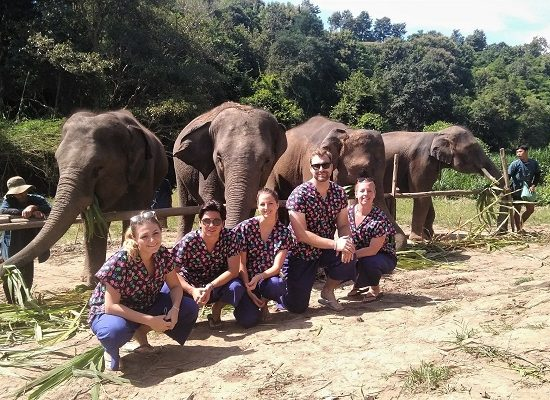 Chiang Mai Elephant Home - 21-22 Sep 2018 - 2 Days 1 Night & Half Day Morning - Group photos