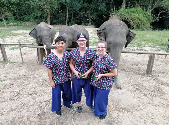 Chiang Mai Elephant Home - 22 Sep 2018 - Full Day Trekking and Half Day Afternoon - Group photos
