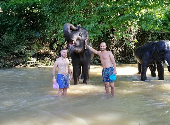 https://driChiang Mai Elephant Home - 23 Sep 2018 - Full Day Trekking & Elephants - Group photosve.google.com/open?id=1seo-G36q7Bl9wAqnDp5FKRs8G9fnFhPl