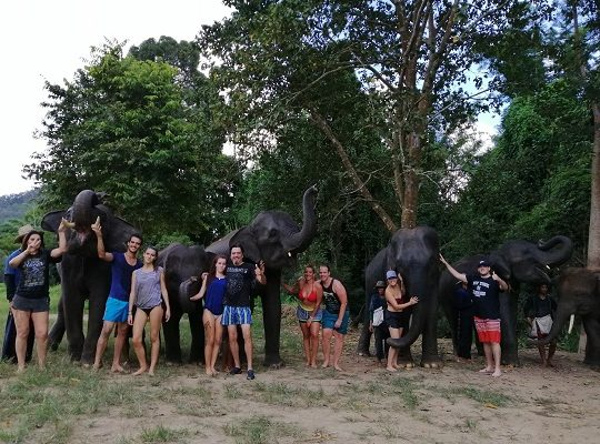 Chiang Mai Elephant Home - 28 Sep 2018 - Full Day Experience - Group photos