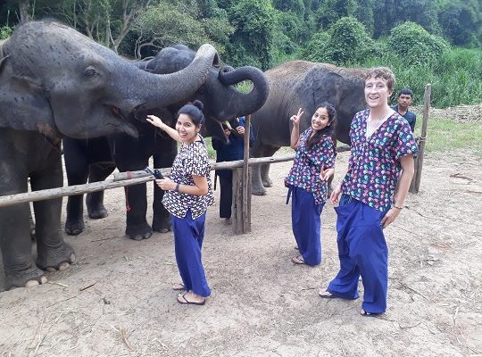 Chiang Mai Elephant Home - 28 Sep 2018 - Full Day Trekking & Elephants - Group photos