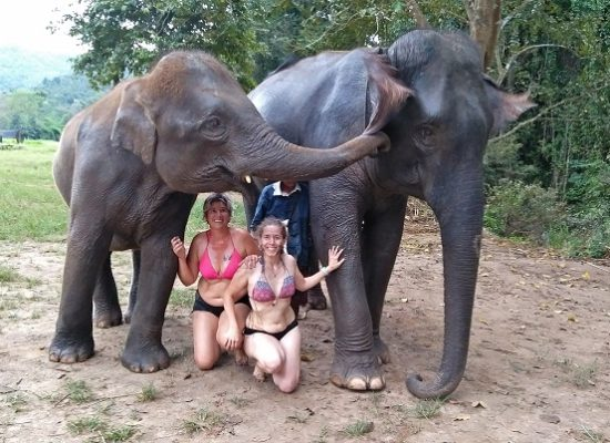 Chiang Mai Elephant Home - 29 Sep 2018 - Half day Morning - Group photos