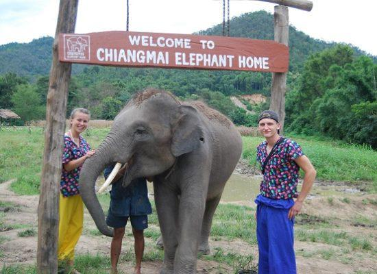 Chiang Mai Elephant Home - 30 Aug 2018 - Half day Afternoon - Group photos