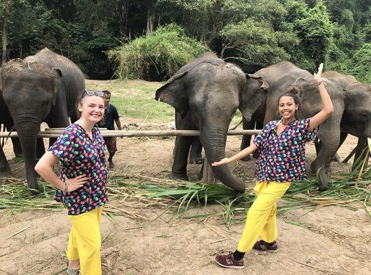 Chiang Mai Elephant Home - 8 Sep 2018 - Full Day Experience - Group photos
