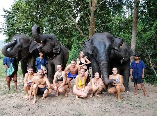 Chiang Mai Elephant Home - 8 Sep 2018 - Half day Afternoon - Group photos