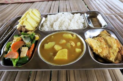 Chiangmai Elephant Home - Two Day one Night Elephant Experience - Buffet Lunch