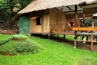 Chiang Mai Elephant Home - บ้านไม้ไผ่ - Bamboo House