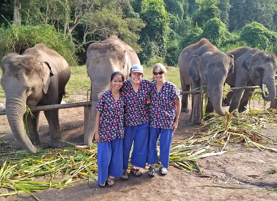 Chiang Mai Elephant Home - 1 Oct 2018 - Half day Afternoon - Group photos