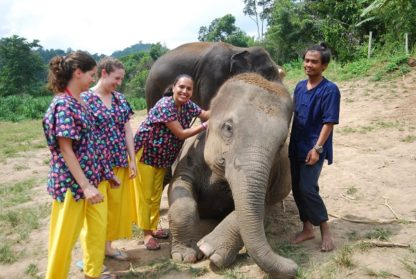 Chiang Mai Elephant Home - 10 Oct 2018 - Full Day Experience - Group photos
