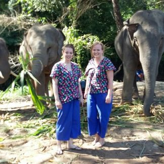Chiangmai Elephant Home - Half Day Morning Elephant Experience