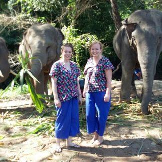 Chiangmai Elephant Home - Half Day Morning Elephant Experience
