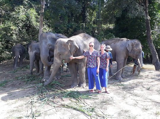 Chiang Mai Elephant Home - 15 Oct 2018 - Full Day Trekking & Elephants - Group photos1