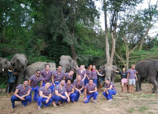 Chiang Mai Elephant Home - 16 Oct 2018 - Half day Afternoon - Group photos