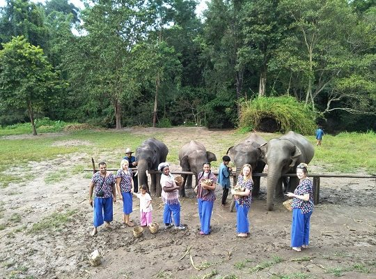 Chiang Mai Elephant Home - 2 Oct 2018 - Half day Afternoon - Group photos