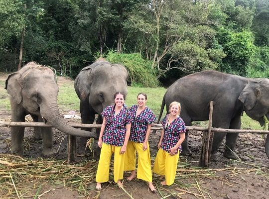Chiang Mai Elephant Home - 3 Oct 2018 - Full Day Experience - Group photos