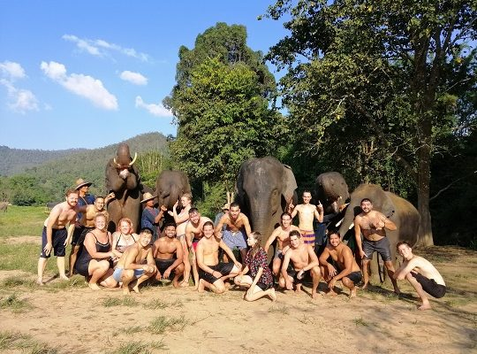 Chiang Mai Elephant Home - 9 Oct 2018 - Half day Afternoon - Group photos