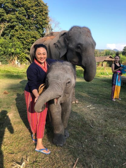 Chiang Mai Elephant home - Bamboo House - บ้านไม้ไผ่ - Maewang - Feed Elephant