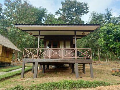 Chiang Mai Elephant home - Teak wood House - Maewang