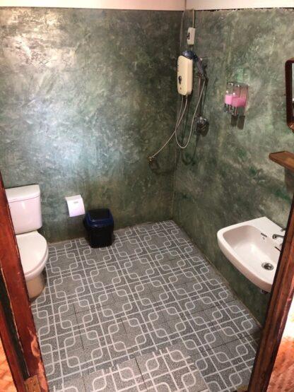 Chiang Mai Elephant home - Teak wood House - Maewang - Toilet