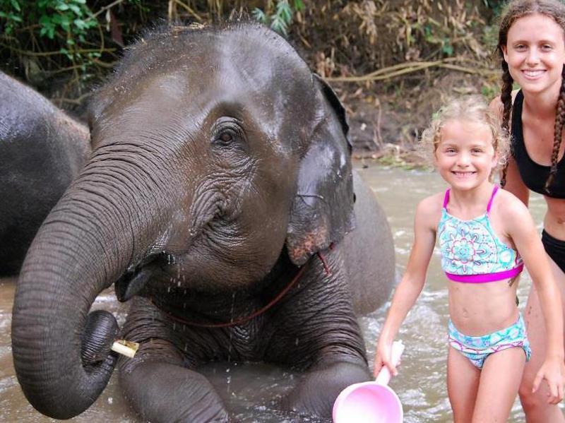 elephant_half_day_morning_tour